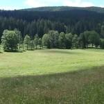 Novohradské hory panoramaticky