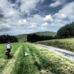 cesta od menhiru