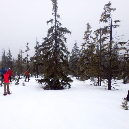 XTR team – zimní camp 2018