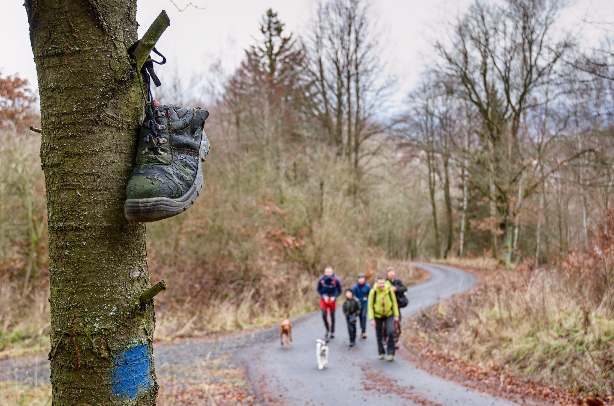 Dnešní výlet do Svatošských skal 🙂 se psí partou Kruškohorců a podKrušnohorců :-*